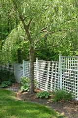lattice work fence