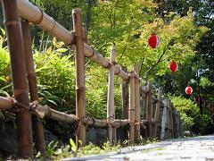 bamboo split rail fence
