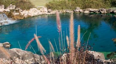 large landscape pond image5