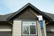 House Painting Contractors Picture