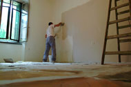 Interior House Painting Picture